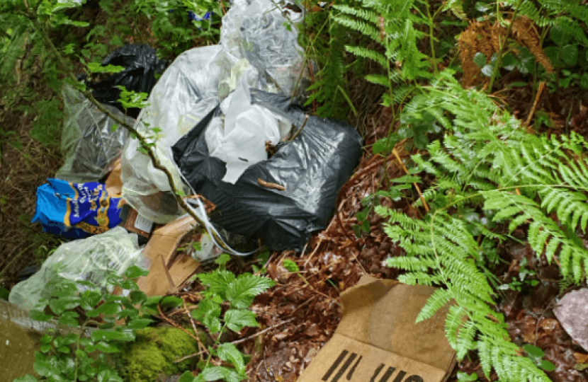 Waste tipped at Savernake Forest